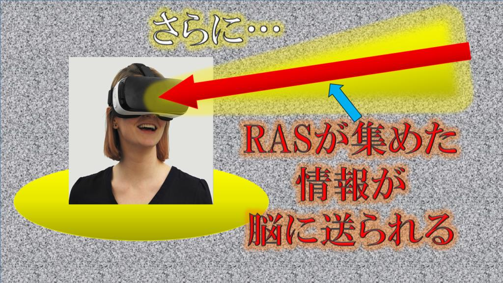 さらに、RAS(ラス)が集めた情報が、脳に送られる
