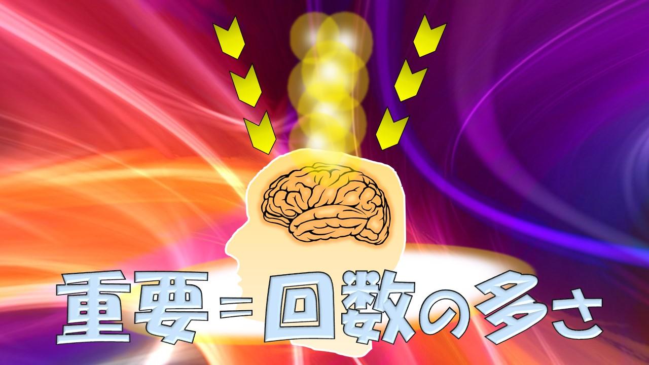 脳の重要度は、回数の多さ